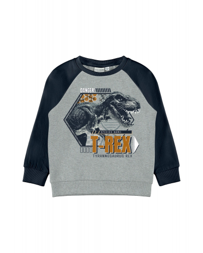 Vildar Sweatshirt Grey Melange
