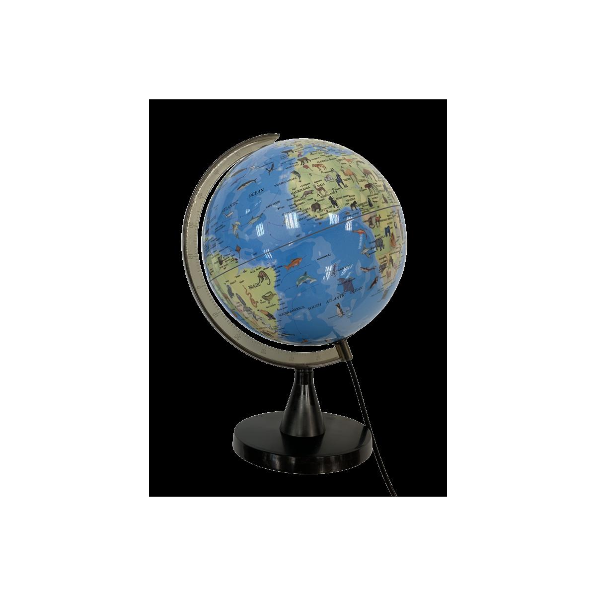 Globus m. Lys